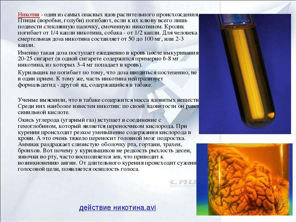 Никотин - один из самых опасных ядов растительного происхождения. Птицы (воро...