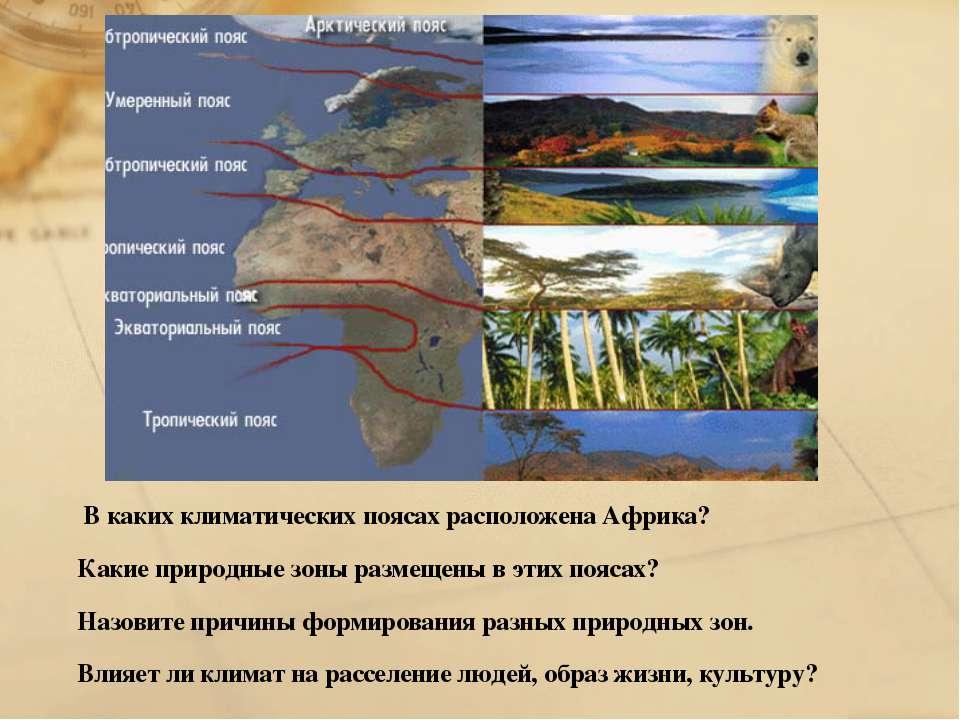 В каких климатических поясах расположена Африка? Какие природные зоны размеще...