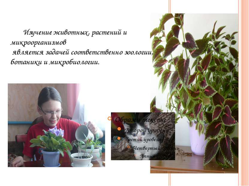 Изучение животных, растений и микроорганизмов является задачей соответственно...