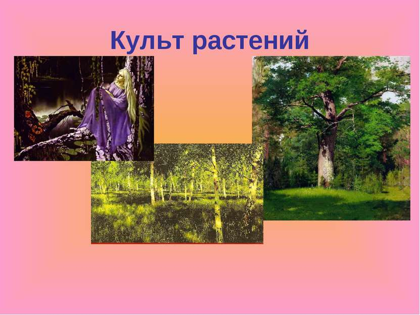 Культ растений
