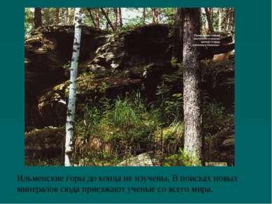 Ильменские горы до конца не изучены. В поисках новых минералов сюда приезжают...