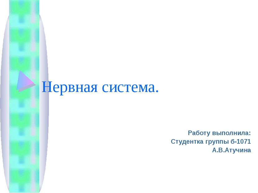 Нервная система. Работу выполнила: Студентка группы б-1071 А.В.Атучина