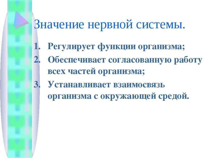 Значение нервной системы. Регулирует функции организма; Обеспечивает согласов...