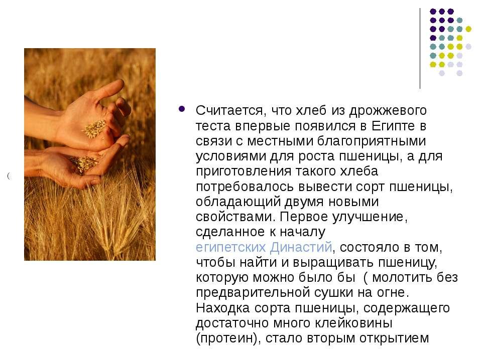 Считается, что хлеб из дрожжевого теста впервые появился в Египте в связи с м...
