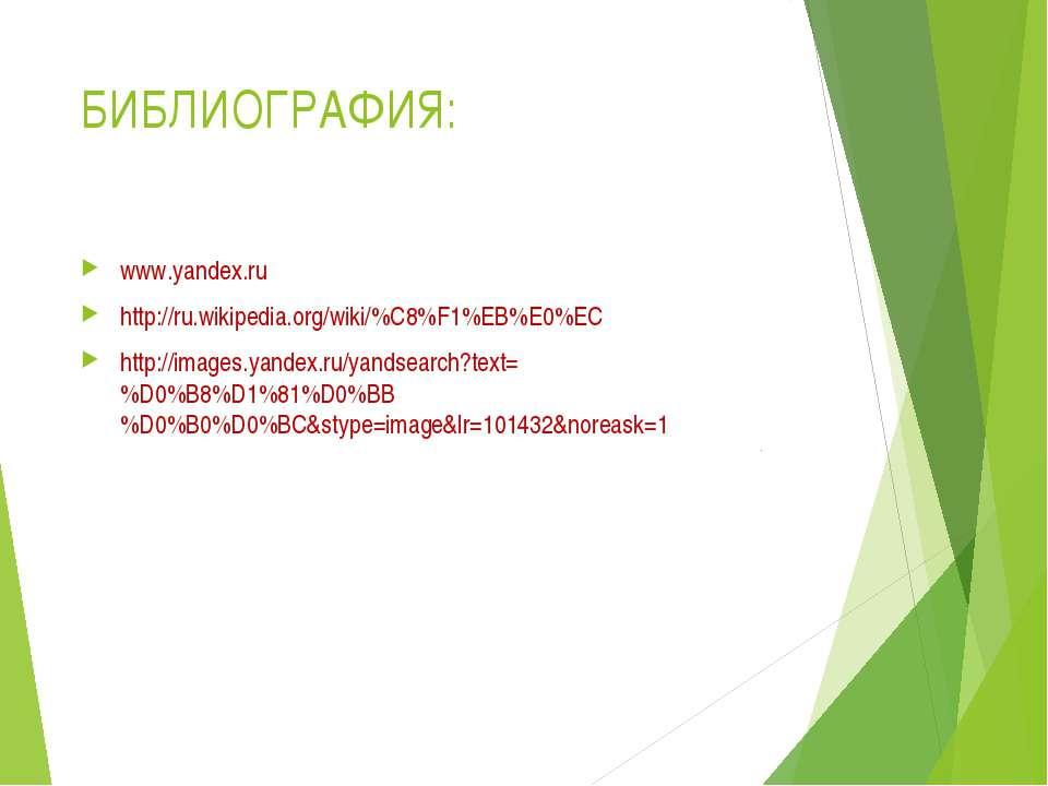 БИБЛИОГРАФИЯ: www.yandex.ru http://ru.wikipedia.org/wiki/%C8%F1%EB%E0%EC http...