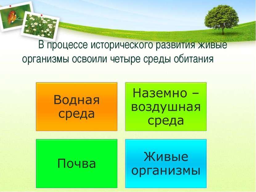 В процессе исторического развития живые организмы освоили четыре среды обитания