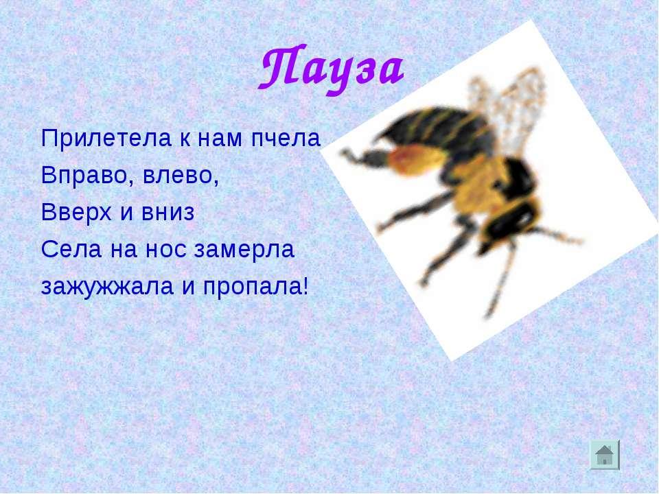 Пауза Прилетела к нам пчела Вправо, влево, Вверх и вниз Села на нос замерла з...