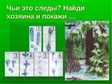 Чьи это следы? Найди хозяина и покажи … 1-заяц, 2-лиса, 3-белка, 4-рябчик, 5-...