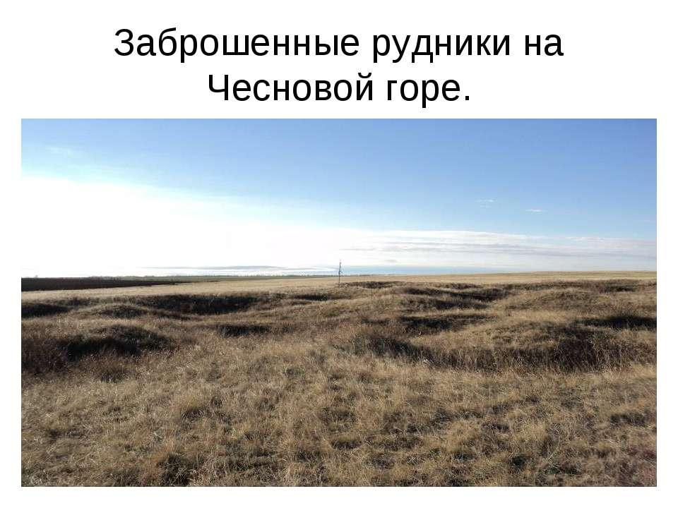 Заброшенные рудники на Чесновой горе.