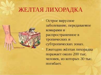 ЖЕЛТАЯ ЛИХОРАДКА Острое вирусное заболевание, передаваемое комарами и распрос...