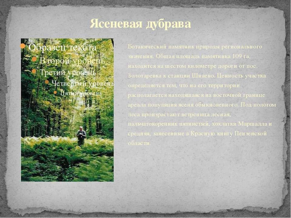 Ботанический памятник природы регионального значения. Общая площадь памятника...
