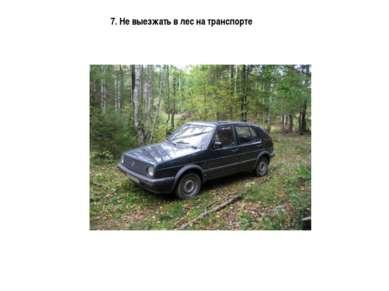 7. Не выезжать в лес на транспорте