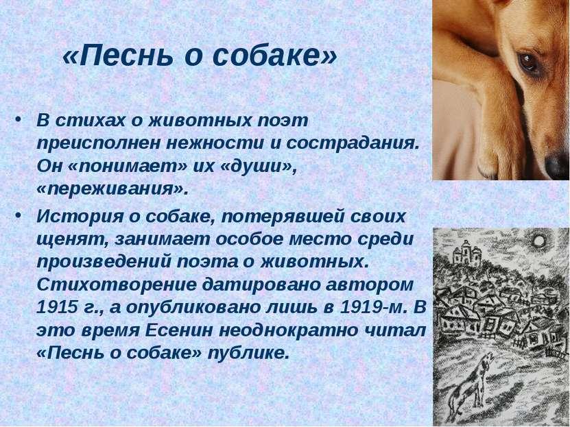 «Песнь о собаке» В стихах о животных поэт преисполнен нежности и сострадания....