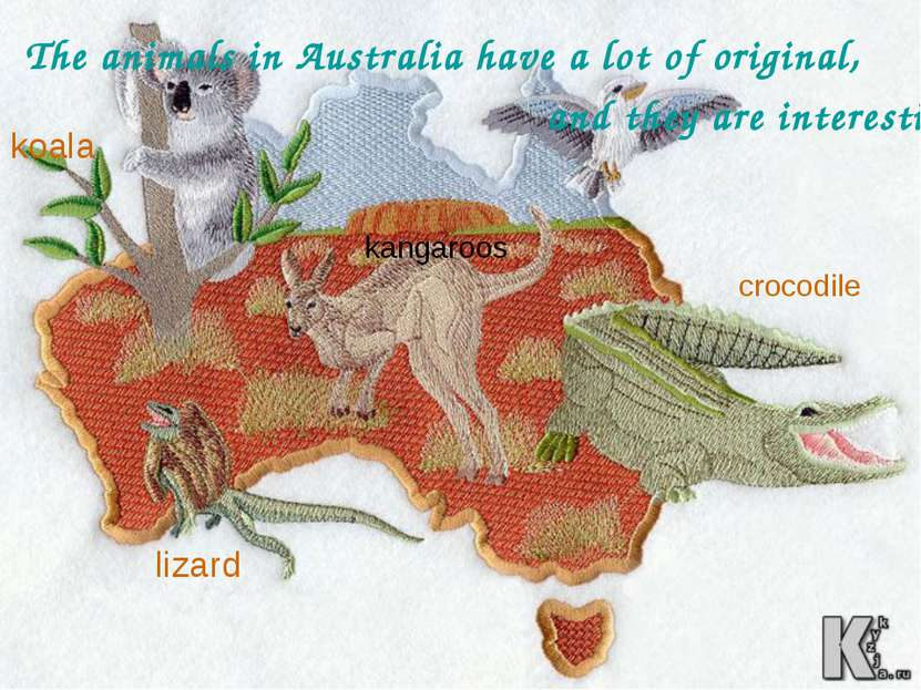 The animals in Australia have a lot of original, and they are interesting, fo...