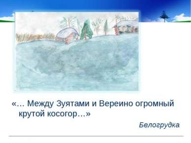 «… Между Зуятами и Вереино огромный крутой косогор…» Белогрудка