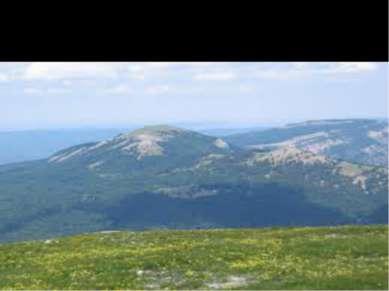 И смертная казнь тока Крымских гор