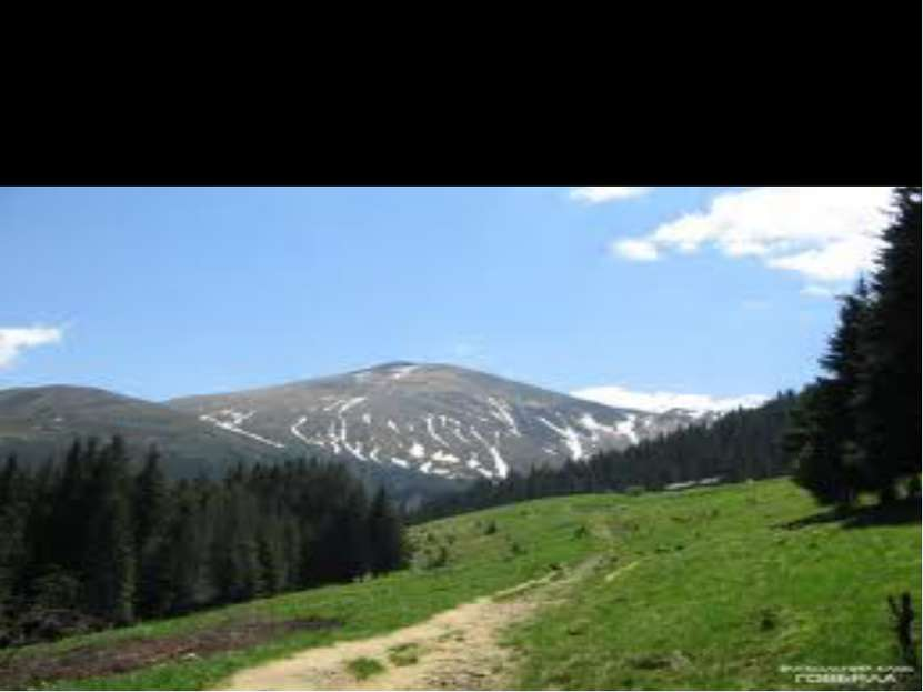 Высшая крапинка Карпат да Украины Гора Говерла