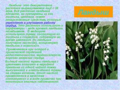 Ландыш Ландыш- это декоративное растение выращиваемое ещё с 18 века. Всё раст...