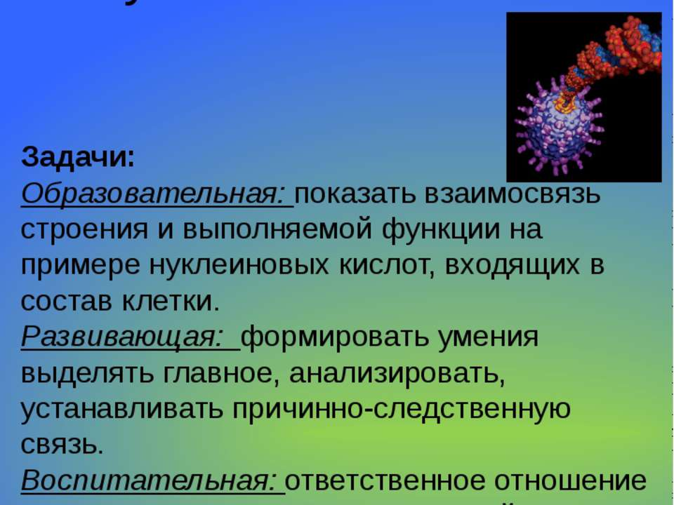 Цель урока: изучение строения и функций нуклеиновых кислот. Задачи: Образоват...
