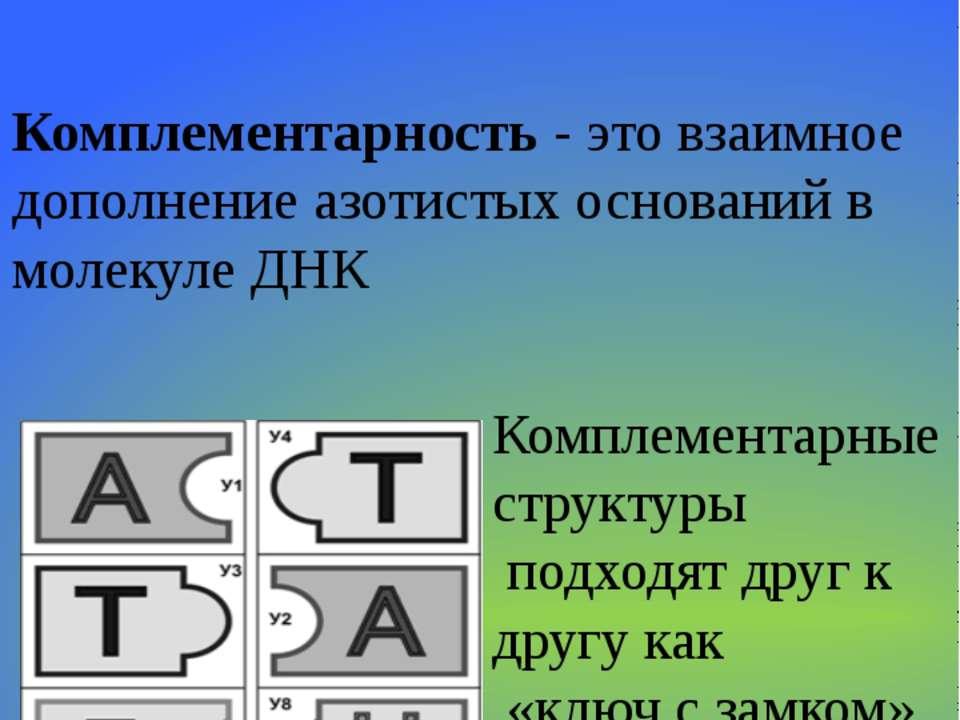 Содержание А=Т Содержание Г= Ц Комплементарность - это взаимное дополнение аз...
