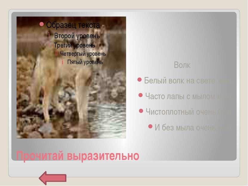 Прочитай выразительно Волк Белый волк на свете жил, Часто лапы с мылом мыл, Ч...