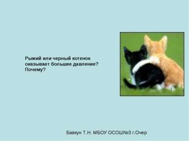 Рыжий или черный котенок оказывает большее давление? Почему? Бавкун Т.Н. МБОУ...