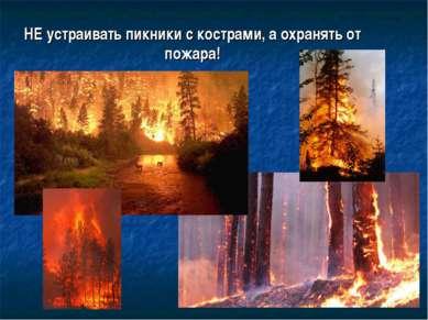НЕ устраивать пикники с кострами, а охранять от пожара!