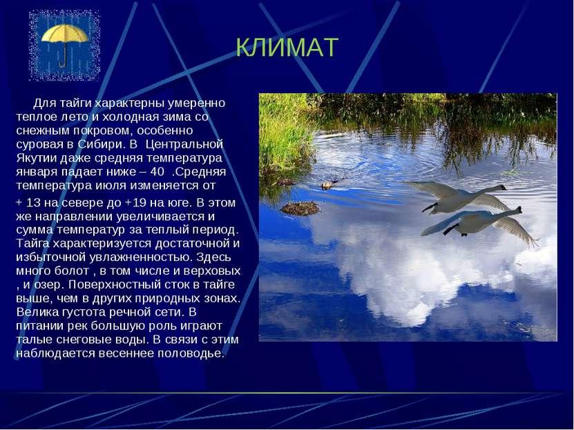 КЛИМАТ Для тайги характерны умеренно теплое лето и холодная зима со снежным п...