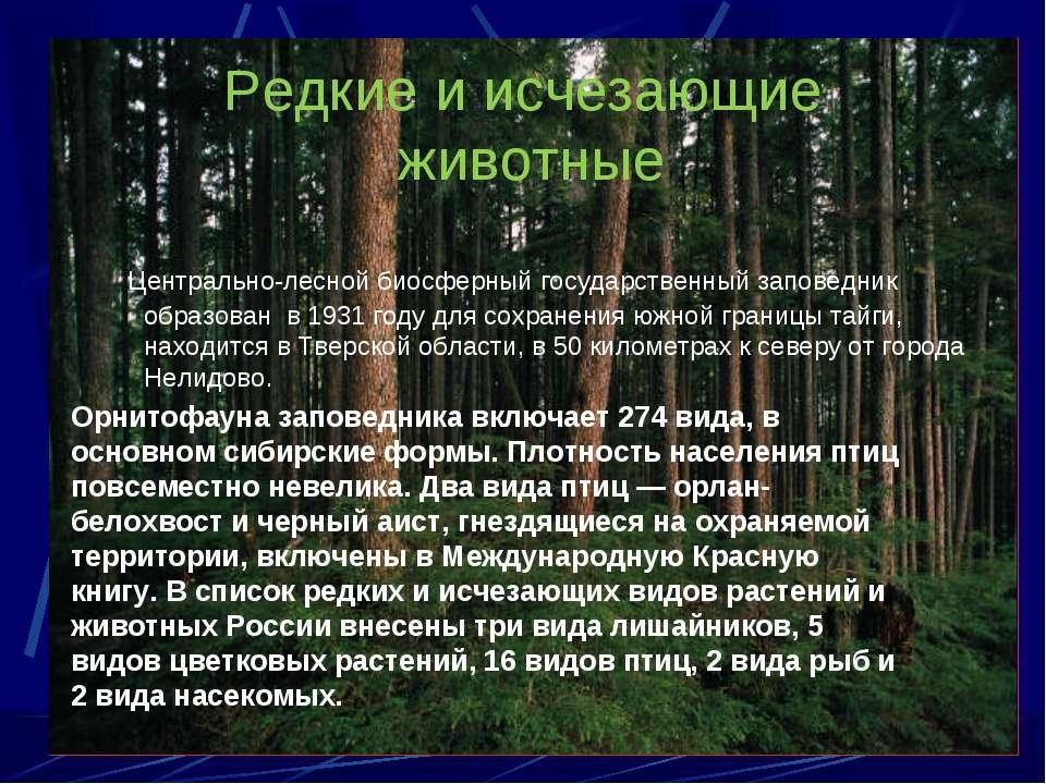 Редкие и исчезающие животные Центрально-лесной биосферный государственный зап...