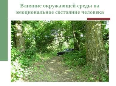 Влияние окружающей среды на эмоциональное состояние человека