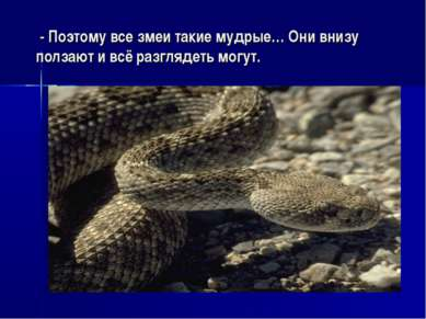 - Поэтому все змеи такие мудрые… Они внизу ползают и всё разглядеть могут.