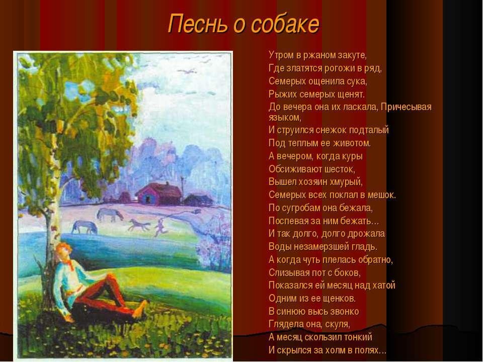 Песнь о собаке Утром в ржаном закуте, Где златятся рогожи в ряд, Семерых ощен...