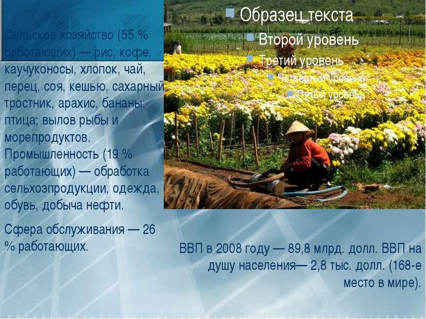Сельское хозяйство (55 % работающих) — рис, кофе, каучуконосы, хлопок, чай, п...