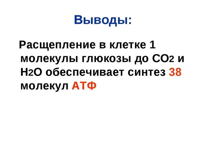 Выводы: Расщепление в клетке 1 молекулы глюкозы до СО2 и Н2О обеспечивает син...