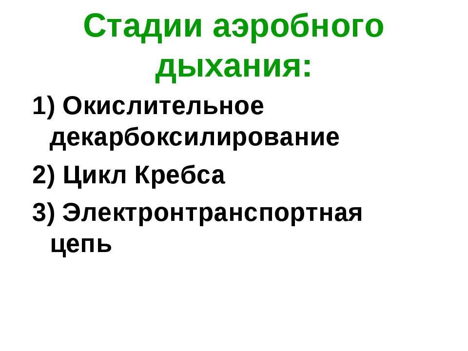 Стадии аэробного дыхания: 1) Окислительное декарбоксилирование 2) Цикл Кребса...