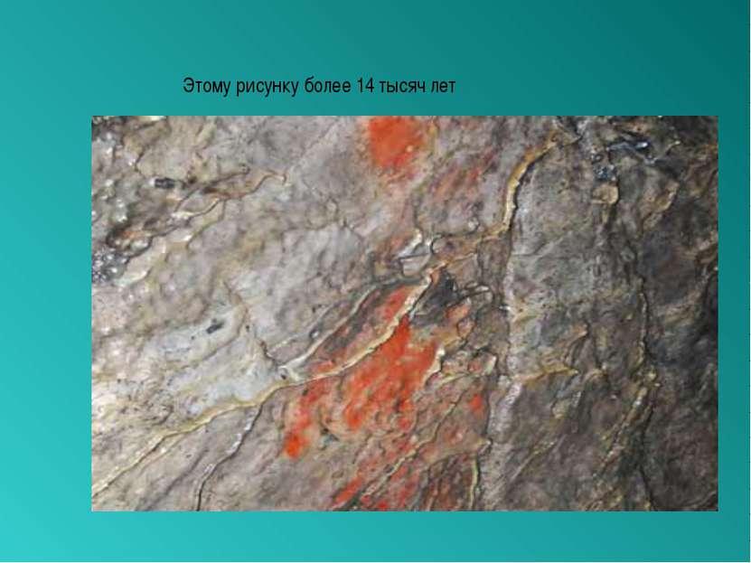 Этому рисунку более 14 тысяч лет