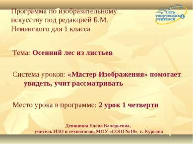 Программа по изобразительному искусству под редакцией Б.М. Неменского для 1 к...