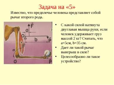 Задача на «5» С какой силой натянута двуглавая мышца руки, если человек удерж...