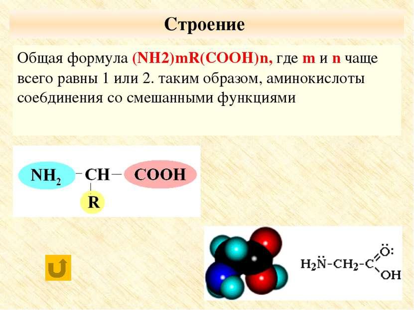 По числу функциональных групп моноаминомонокарбоновые кислоты; диаминомонокар...