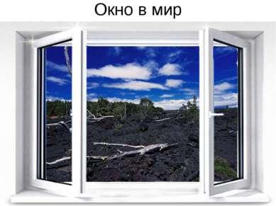 Окно в мир