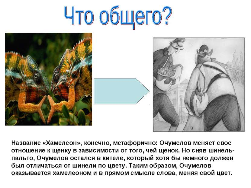 Название «Хамелеон», конечно, метафорично: Очумелов меняет свое отношение к щ...