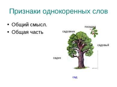 Признаки однокоренных слов Общий смысл. Общая часть сад садик садовый садовни...
