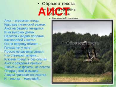 Аист – огромная птица: Крыльев гигантский размах. Аист на башнях гнездится И ...