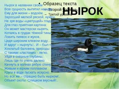 НЫРОК Нырок в названии своём Всю сущность выпятил наружу, Ему для жизни – вод...