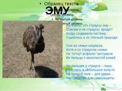 ЭМУ Вы знали, что страусы эму – Совсем и не страусы, вроде? Когда создавали с...