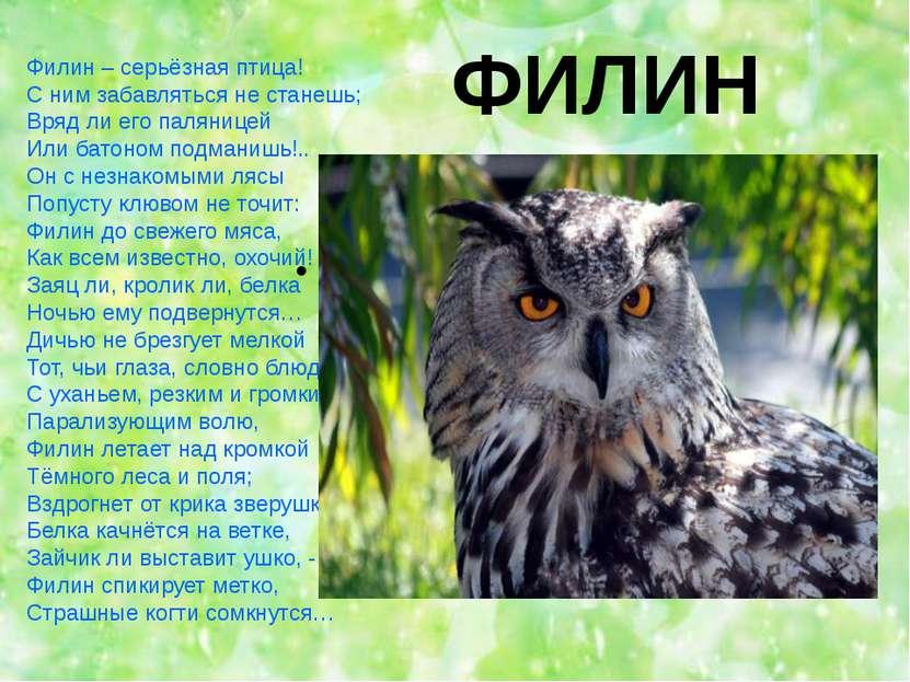 ФИЛИН Филин – серьёзная птица! С ним забавляться не станешь; Вряд ли его паля...