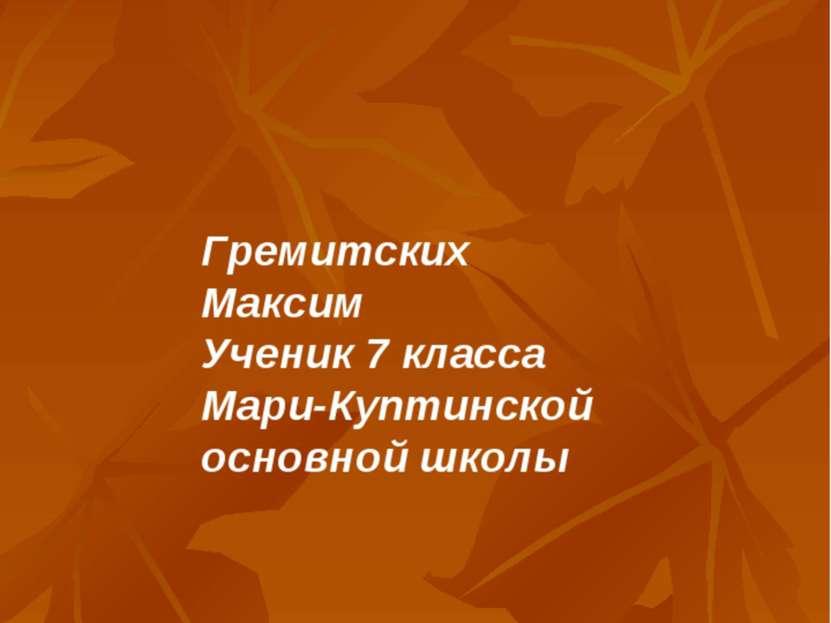 Гремитских Максим Ученик 7 класса Мари-Куптинской основной школы