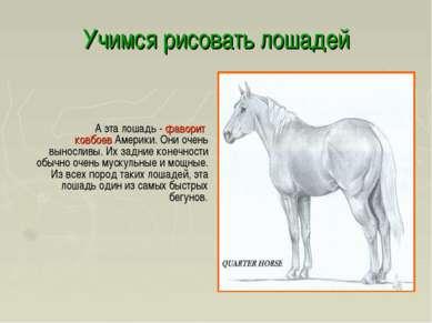 Учимся рисовать лошадей А эта лошадь - фаворит ковбоев Америки. Они очень вын...