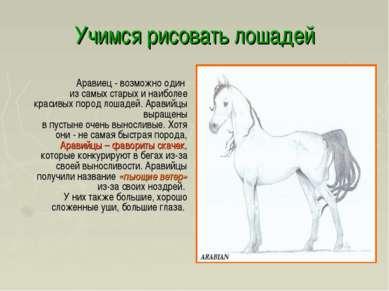 Учимся рисовать лошадей Аравиец - возможно один из самых старых и наиболее кр...