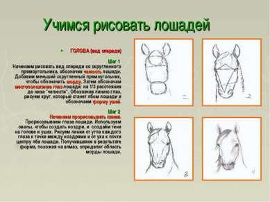 Учимся рисовать лошадей ГОЛОВА (вид спереди) Шаг 1 Начинаем рисовать вид спер...